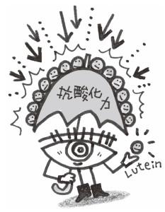 lutein04